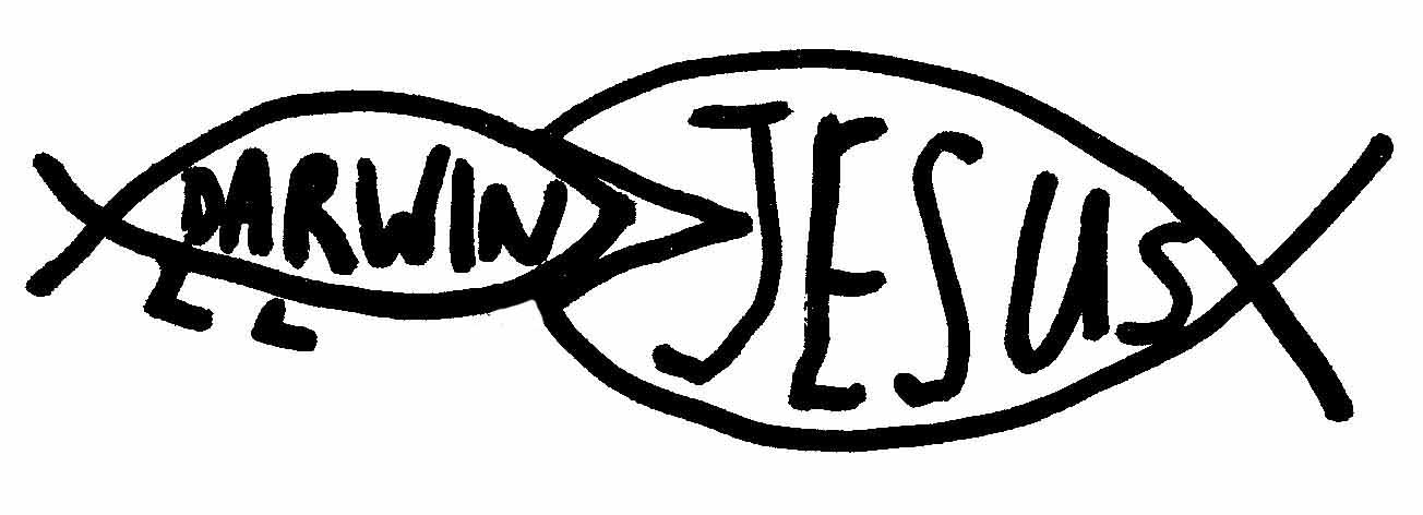 Jesus Fish By Larry Gilman House Of Mercy